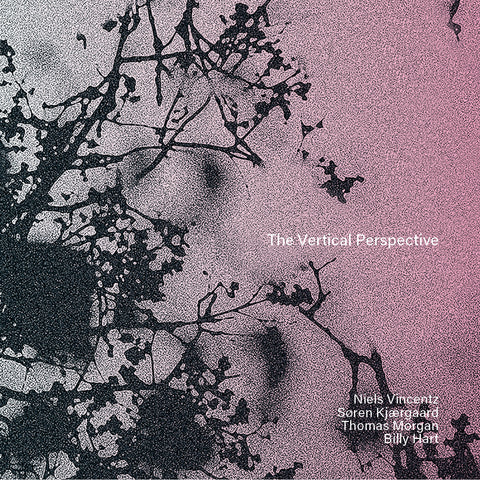 The Vertical Perspective