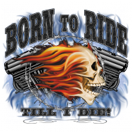 Born To Ride Til I Die Skull Flames Motorcycle FREE SHIPPING New Mens T-shirt