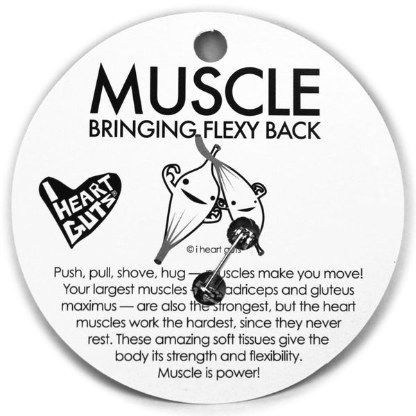 Muscle Pin