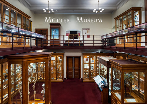Mütter Museum Current Interior Postcard
