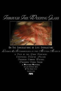 Through the Weeping Glass: On the Consolations of Life Everlasting