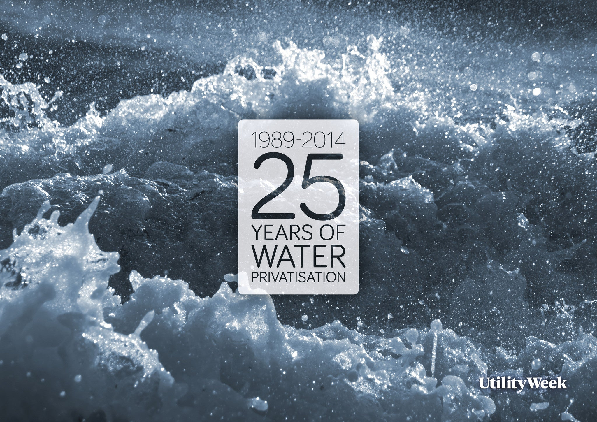 25 Years of Water Privatisation