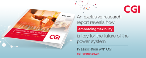 Exclusive research report: Embracing Flexibility