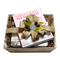 Chocolate For Beginners Starter Gift Box