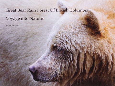 Great Bear Rain Forest Of British Columbia