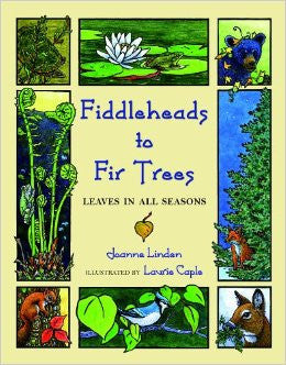 Fiddleheads To Fir Trees The Local Store