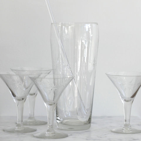 Martini Glasses and Pitcher Set