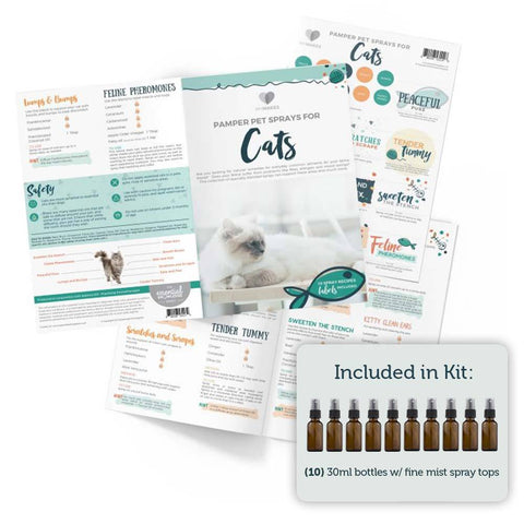 Essential Oils for Cats – Your Oil Tools