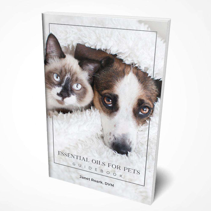 Essential Oils for Pets Guidebook - Your Oil Tools