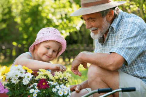 Spring; girl and grand father flower