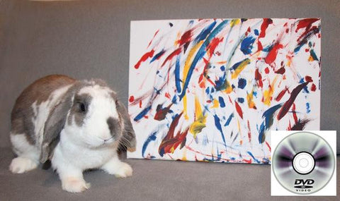 Large Bini the Bunny Painting with Optional DVD