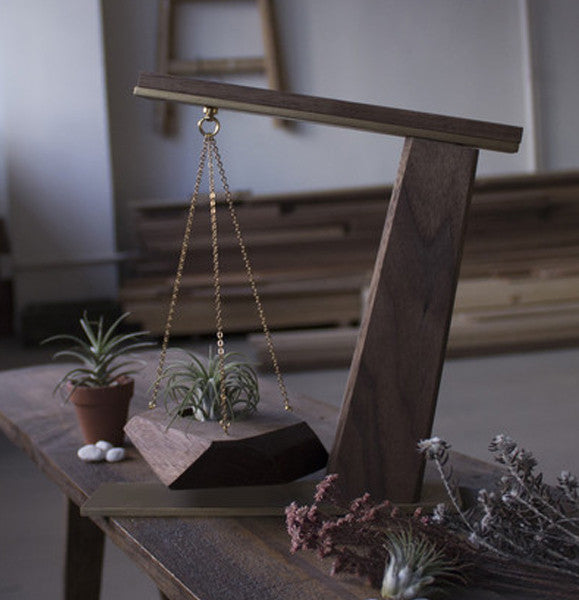 Air Plant Display Stand