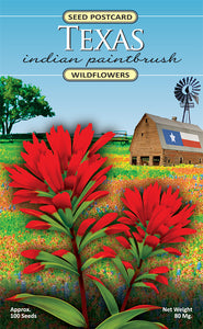 Wildflower Post Card Seed Packets