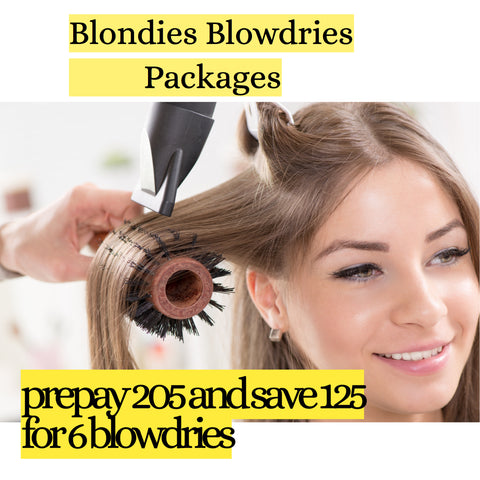 Prepay and Save-Blow Dry Package of 6