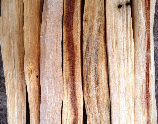 "Palo Santo ""Holy Wood"" Sticks Incense 1 oz."