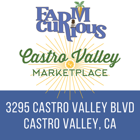 Castro Valley Marketplace Events with FARMcurious