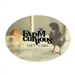 Gift Card / Gift Certificate