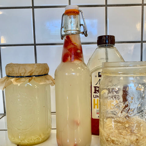 Homemade Fermented Beverages, a Follow-Along Virtual Event (FAVE) - Sat May 16th, 11am