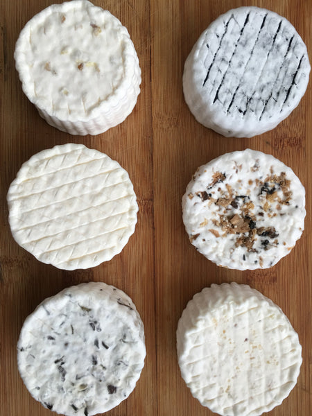 Full Day Cheesemaking Boot Camp - with Premium Sommelier-Led Wine Pairing