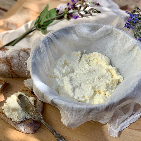 Making Ricotta, a Follow-Along Virtual Event (FAVE) - Sat, May 9th,11am