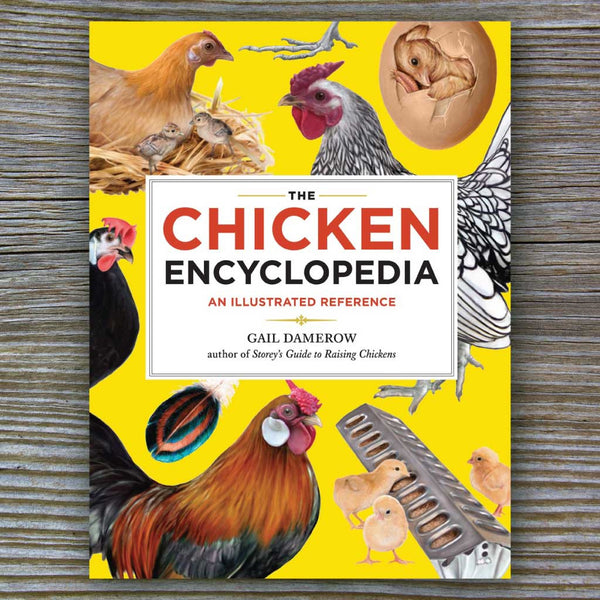 The Chicken Encyclopedia - Book by Gail Damerow