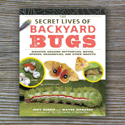 The Secret Lives of Backyard Bugs - Book by Wayne Richards and Judy Burris