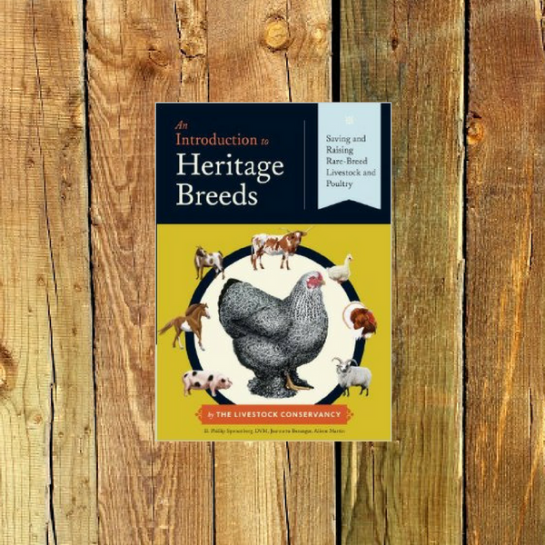An Introduction to Heritage Breeds: Saving and Raising Rare-Breed Livestock and Poultry - Book by D. Phillip Sponenberg and Jeannette Beranger