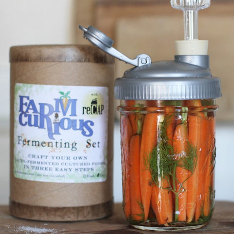 The All-Inclusive FARMcurious Fermenting Set With Jar