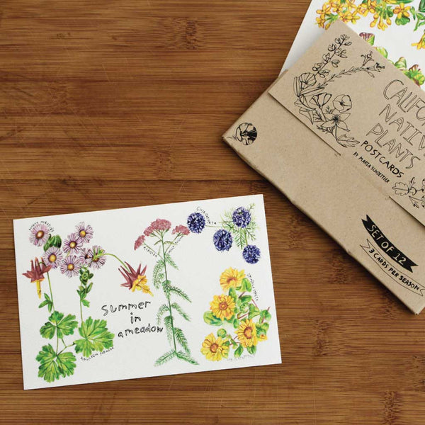 Notecard with drawing of California native plants