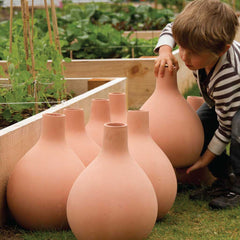 GrowOya Olla watering pots