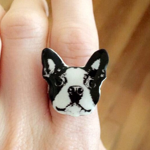 Boston Terrier/Frenchie Ring - Sofa City Sweethearts  - 1