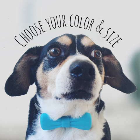 Eco-Friendly Bow Tie Collar Clip-8 Color & 2 Size Options