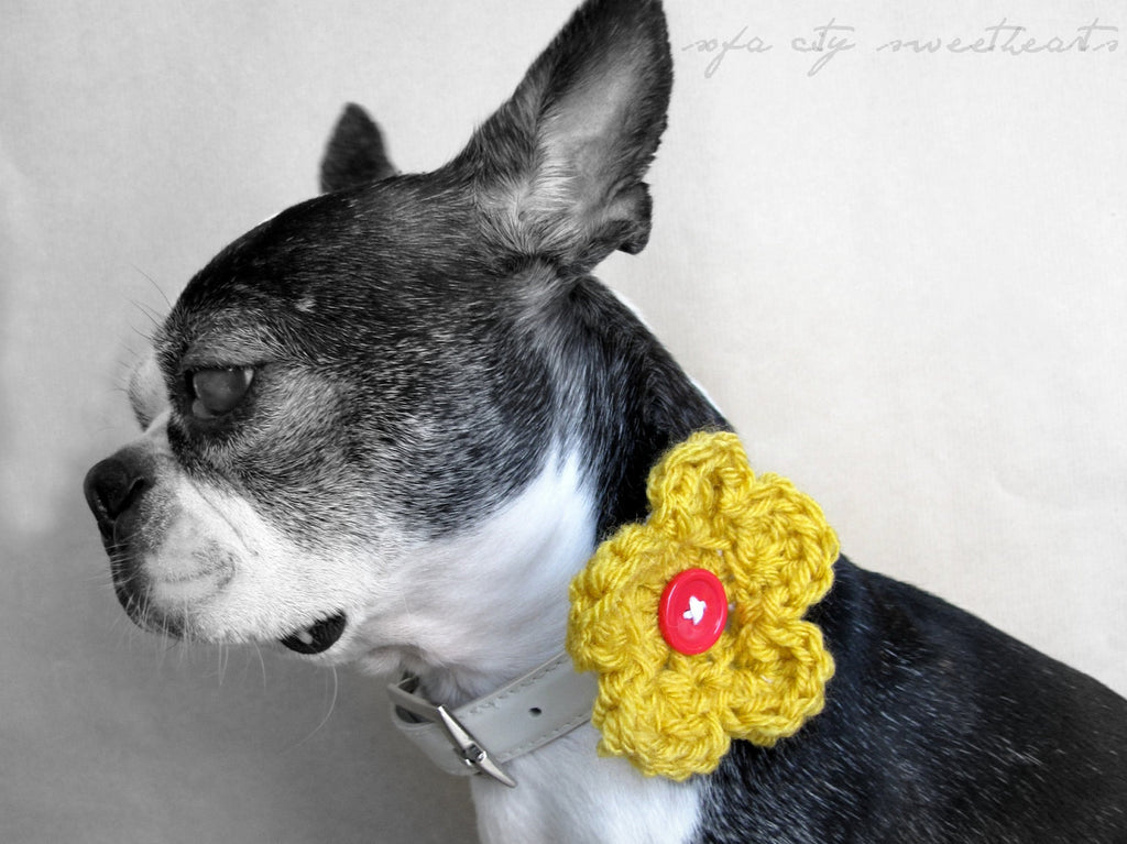 Single Crochet Dog Collar Flower- MORE COLORS-Sofa City Sweethearts-Sofa City Sweethearts