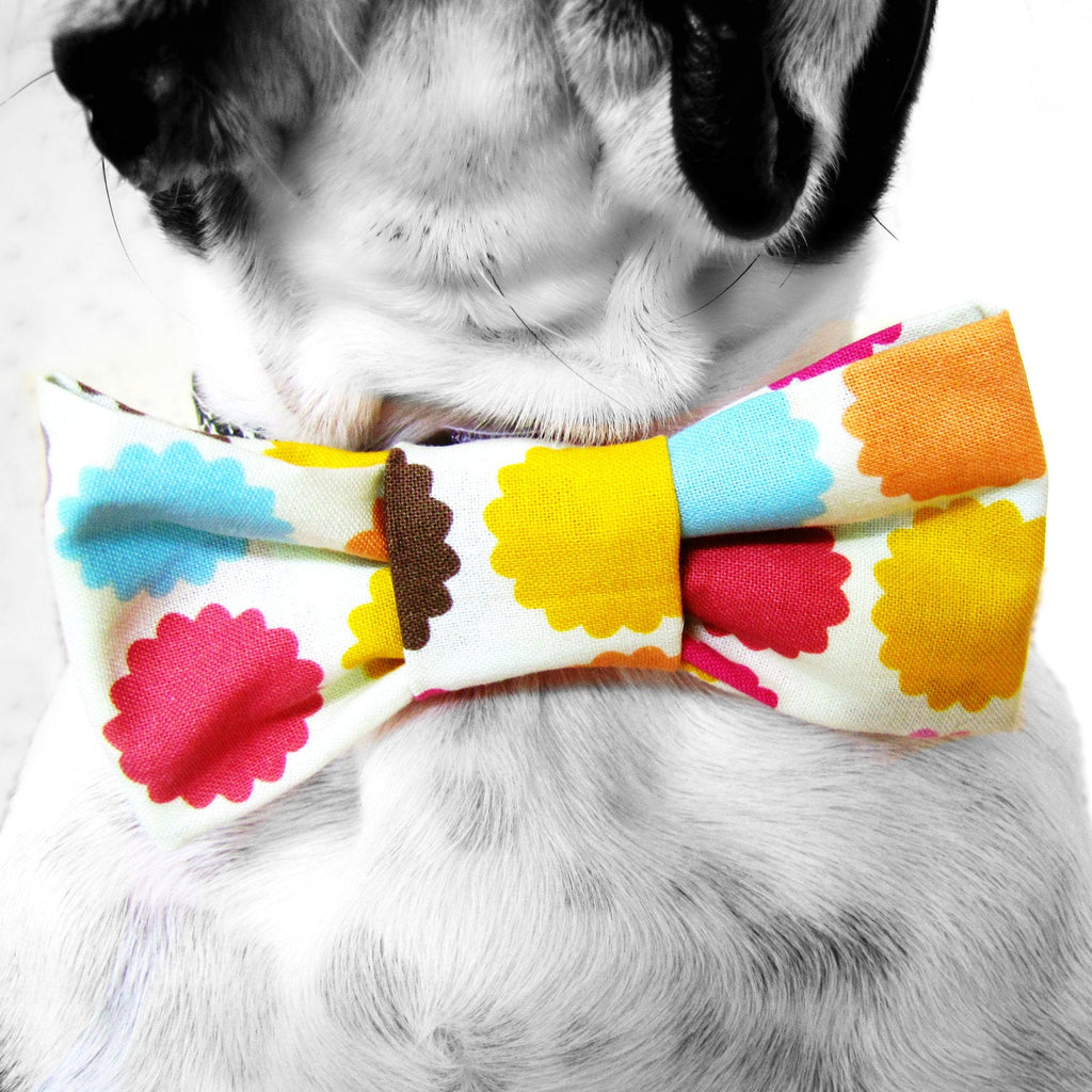 Dog Collar Bow Tie-Multi Floral-Sofa City Sweethearts-Sofa City Sweethearts