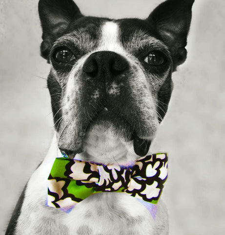 Green Floral Bow Tie