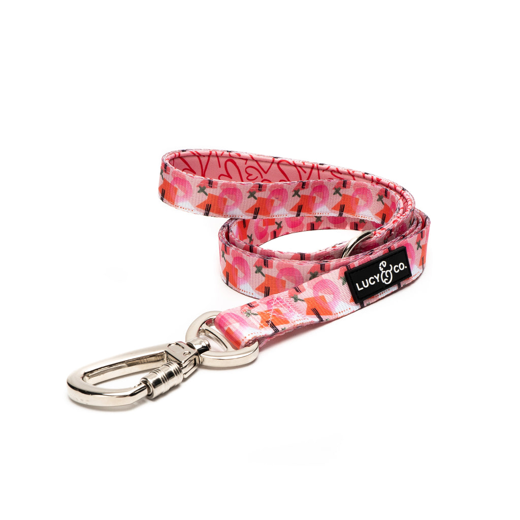 LIMITED EDITION! The XOXO Leash