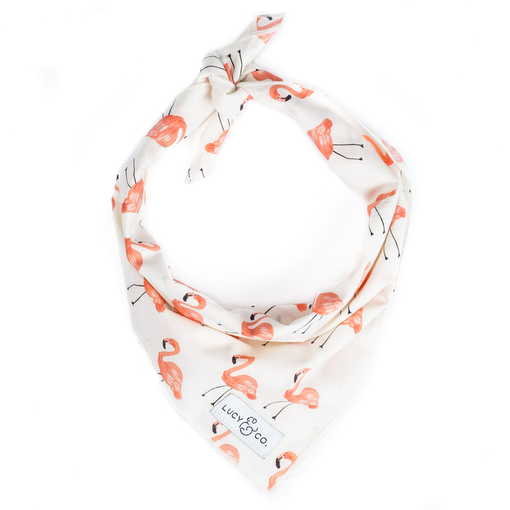 The Britney Bandana by Lucy & Co.