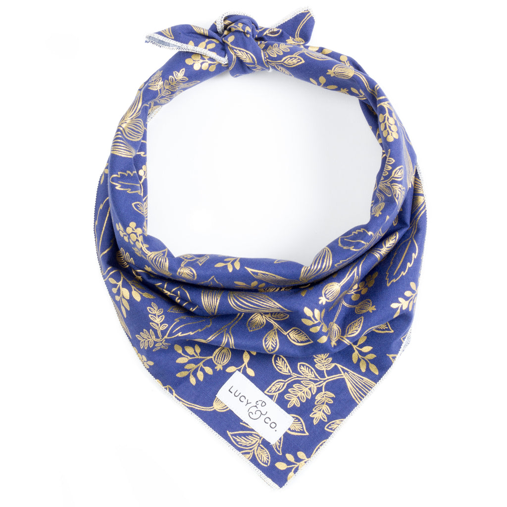 NEW! The Ollie Bandana by Lucy & Co.