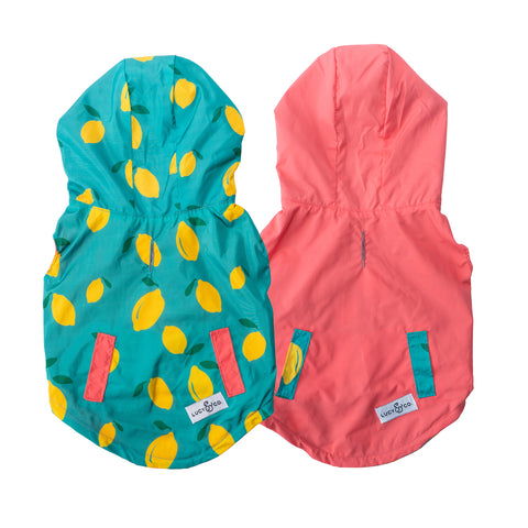 NEW! The Lemon Drop Reversible Raincoat
