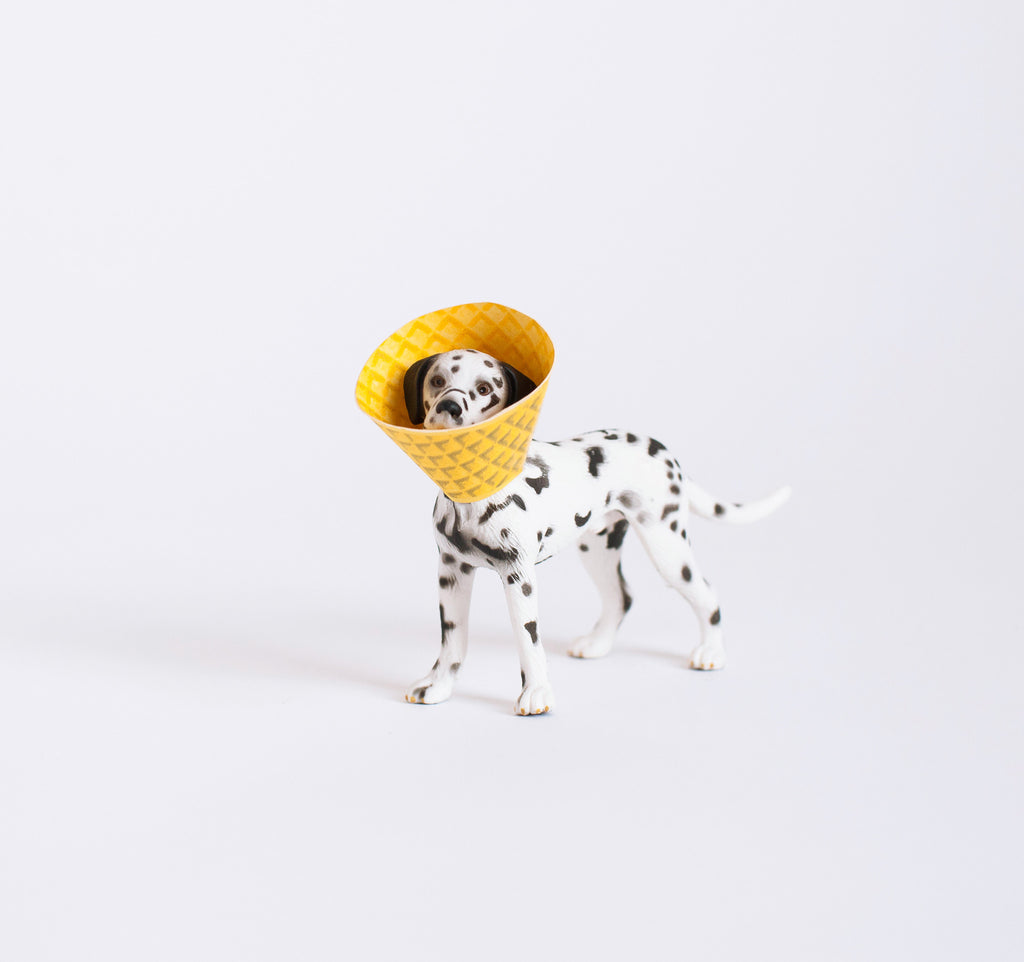 Ice Cream Cone Dog Print: Dalmation