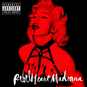 Bordelle Bondage open bra as worn by Madonna on Rebel Heart Super Deluxe Edition