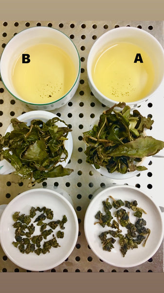 LIMITED Late Spring 2019 Premium Selected Taiwanese High Mt. Tea Loose Leaves (2 flavors)