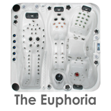 The Euphoria 4 person hot tub