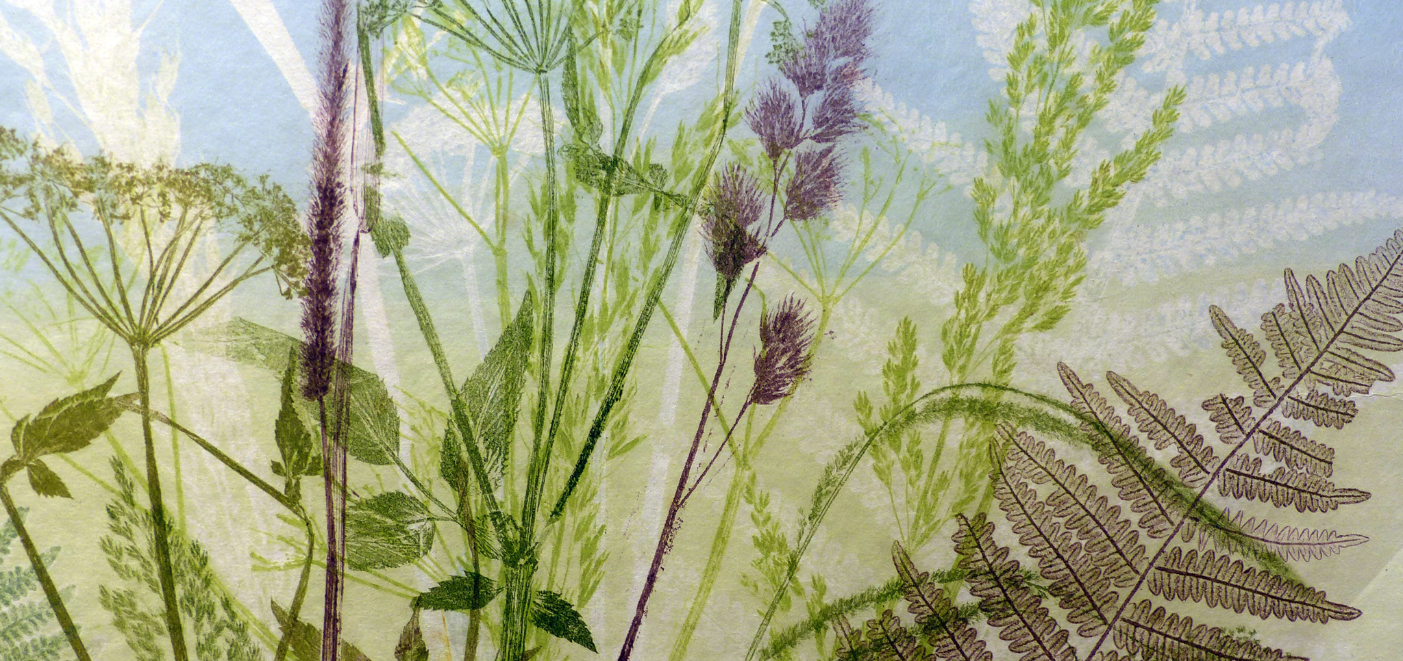 Multicoloured monoprint banner of British wild plants including fern and grasses.