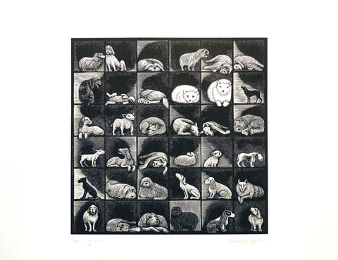 Hilary Paynter Wood Engraving: Dog Show