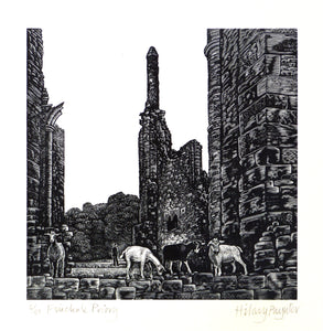 Hilary Paynter Wood Engraving: Finchale Priory