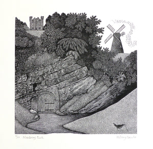 Hilary Paynter Wood Engraving: Mowbray Park