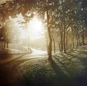 Anja Percival. Etching: Sun Light IV