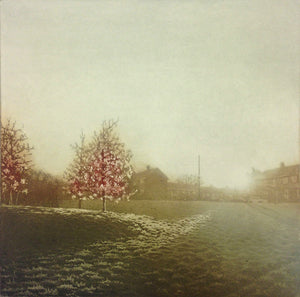 Anja Percival. Etching: Sun Light