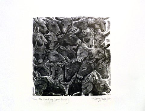 Hilary Paynter Wood Engraving: Donkey Sanctuary